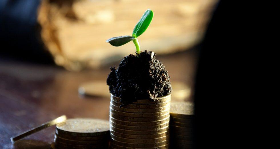 Geld- und Finanzanlagen mithilfe des Fondsranking