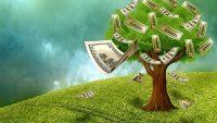 Die richtige Geldanlage im Jahr 2016 finden